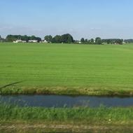 Driving with a train through a flat landscape at the province Overijssel in The Netherlands