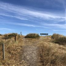 Bench on the sand dunes at Ameland island in Friesland The Netherlands