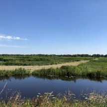 Nature in the Alde Feanen National Park in Friesland The Netherlands