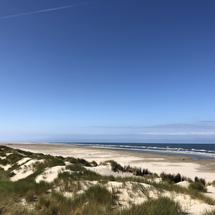 Sand dunes and the beach on Borkum island in Germany