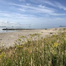 Beach at Kornwerderzand in Friesland, The Netherlands