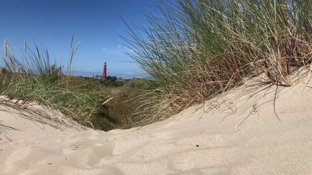 Sand dunes and with the Lighthouse in the background on Schiermonnikoog in The Netherlands