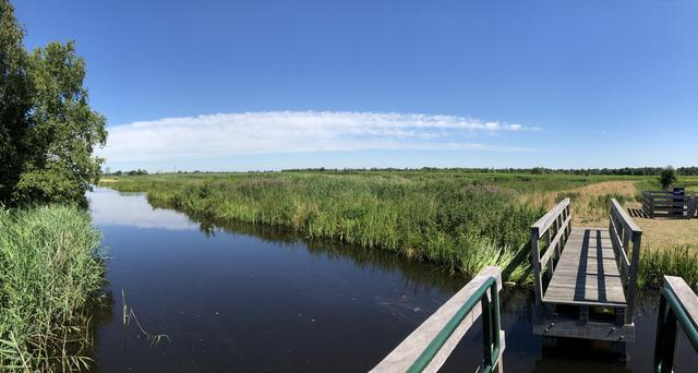 Panorama landscape in the Alde Feanen National Park in Friesland The Netherlands