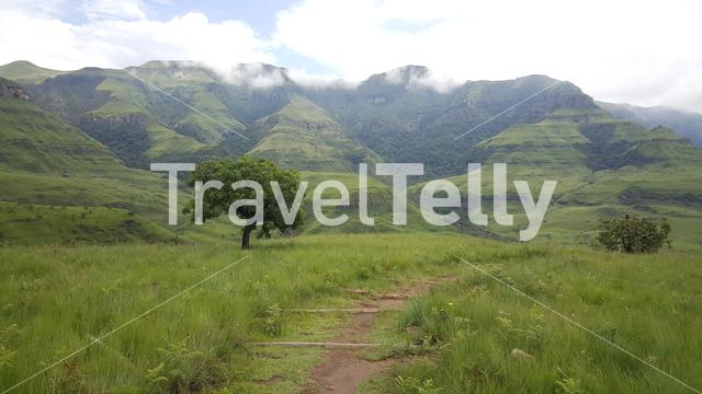Hiking path at Natal Drakensberg National Park in South Africa in South Africa