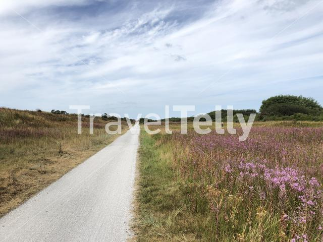 Bicycle path on Ameland island in Friesland The Netherlands