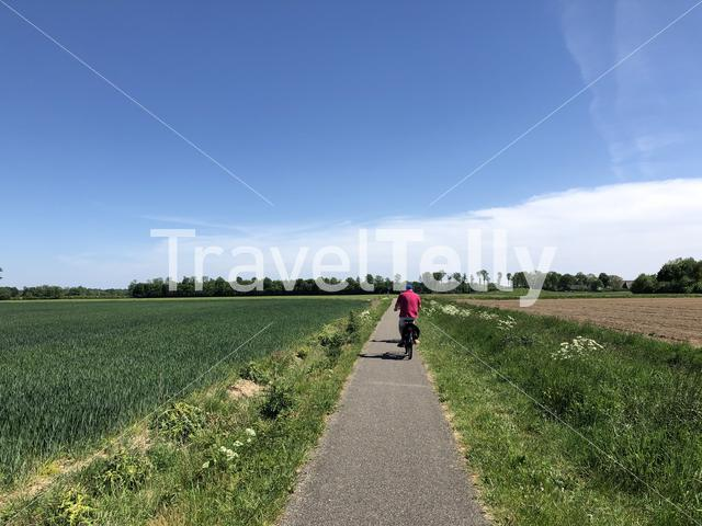 Tourist cycling in the nature around Doesburg in Gelderland, The Netherlands