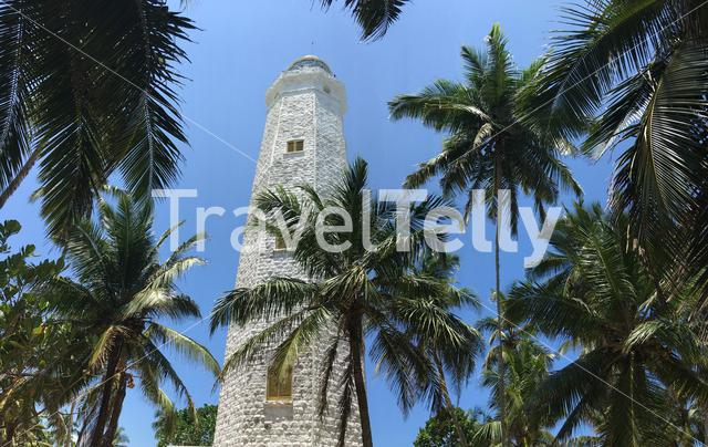 Dondra Head Lighthouse panorama behind palmtrees near the southern most point in Sri Lanka
