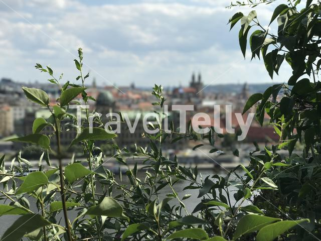 View from Letna Park at the Vltava River in Prague, Czech Republic