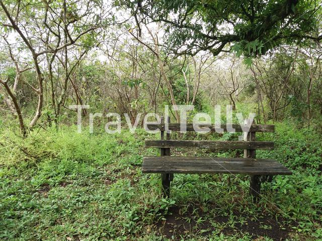 Place to rest while hiking in Isabela