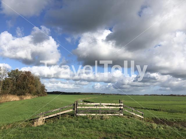 A nature reserve around Wolvega in Friesland, The Netherlands