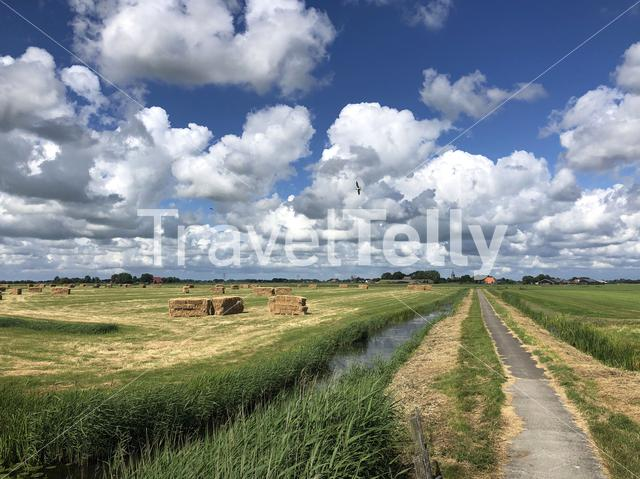 Walk and cycle path in Friesland The Netherlands