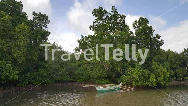 Traditional boat of the Philippines in mangrove bush