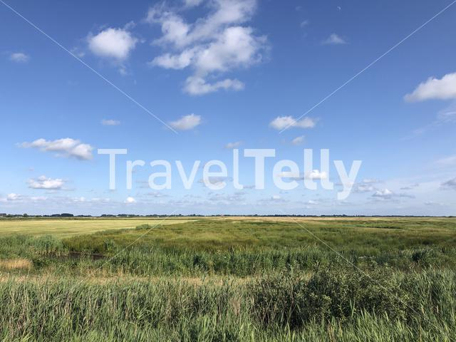 Scenery around Offingawier in Friesland The Netherlands