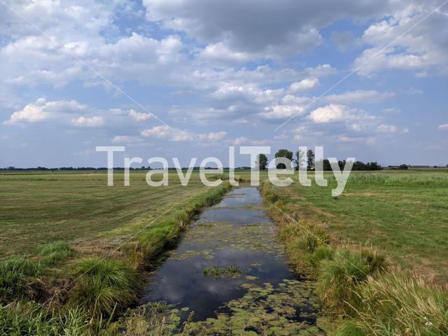 Farmland around Oldelamer in Friesland The Netherlands