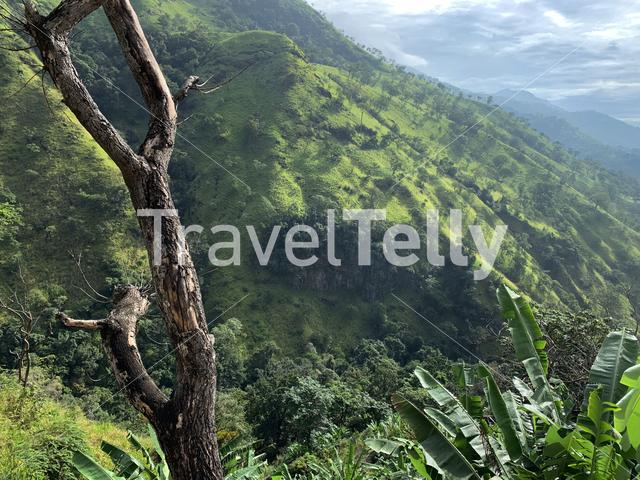 Green mountain landscape around Ella in Sri Lanka