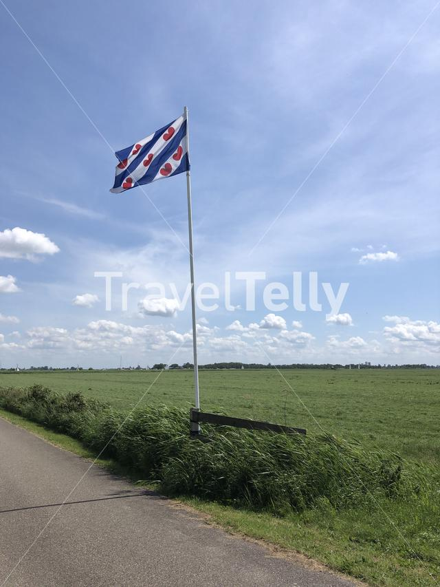 Frisian flag in Friesland The Netherlands