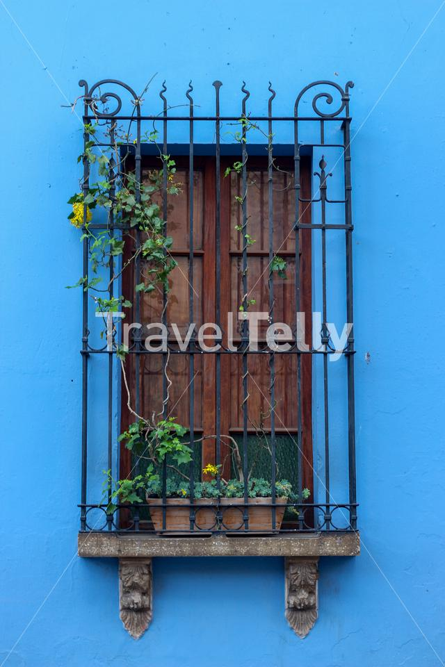 Window over blue wall