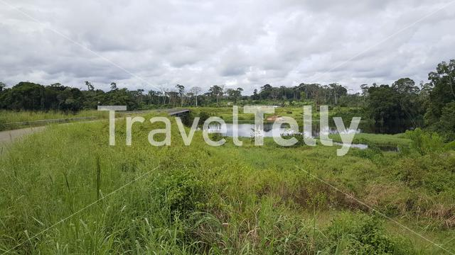River at the Gabon and Cameroon border in Africa