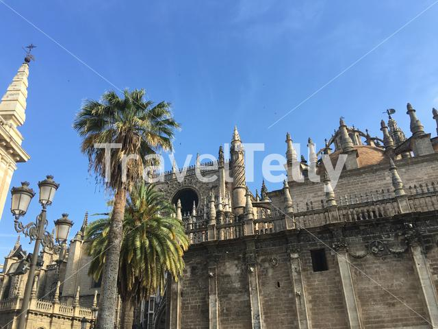 The Cathedral of Saint Mary of the See better known as Seville Cathedral, is a Roman Catholic cathedral in Seville, Spain