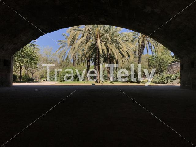 View from the Pont del Real at the Gardens of Turia in Valencia Spain