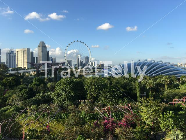 Flower dome and Singapore Flyer seen from Supertree Grove at the garden by the bay in Singapore