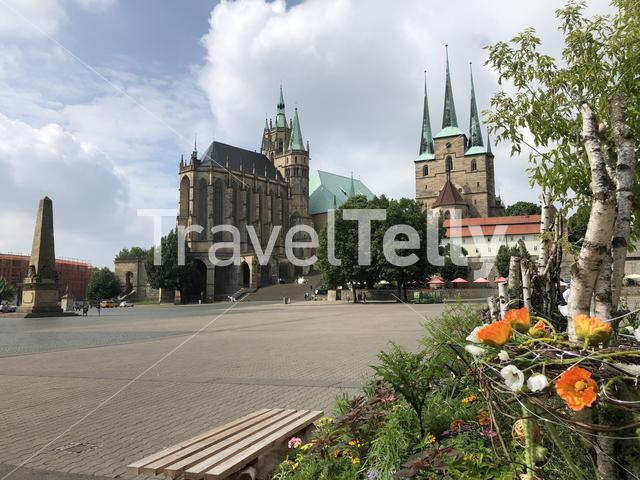 Flowers in front of the Erfurt Cathedral and St. Severi church in Erfurt, Germany