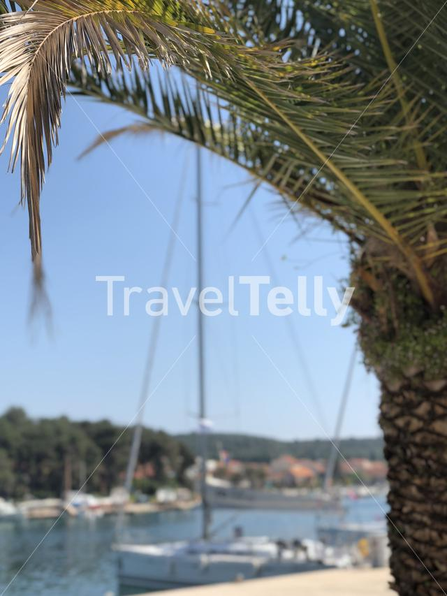 Sailboat at the Boulevard in Stari Grad Croatia
