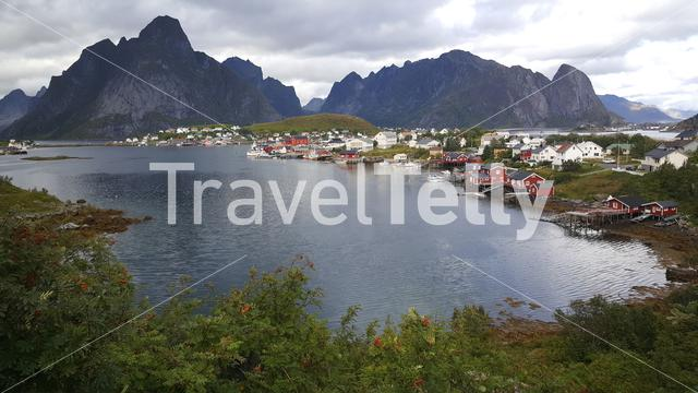 The fishing village Reine in Norway