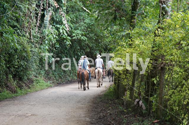 In the Colombian countryside, horses are used as an important way of transportation. Farmers from Andes, in the Southwestern of Antioquia.