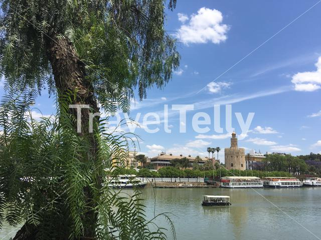 Canal de Alfonso XIII with the Torre del Oro in Seville Spain
