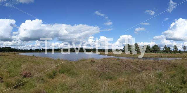 Lake at the Drents-Friese Wold National Park in The Netherlands