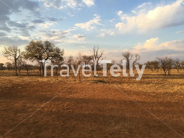 Savanna landscape Atherstone Nature Reserve in South Africa