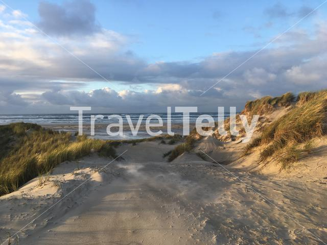 Sand dunes landscape on Terschelling in The Netherlands