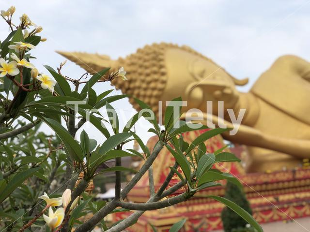 Reclining Buddha at What Pha That Luang in Vientiane Laos