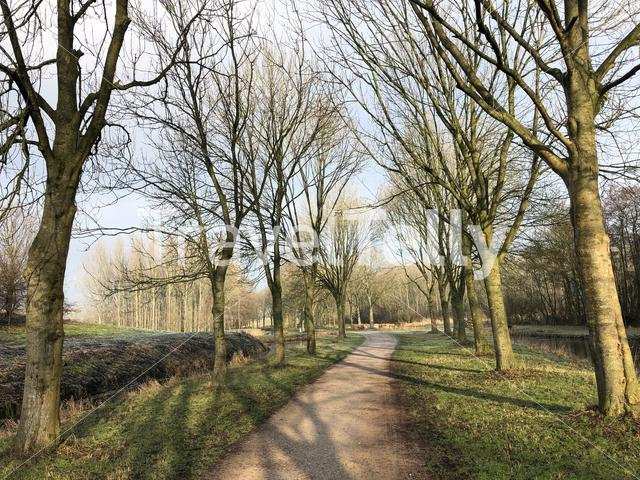 Path through the Mayor Rasterhoffpark in Sneek
