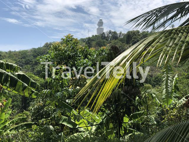 Big buddha in Phuket Thailand