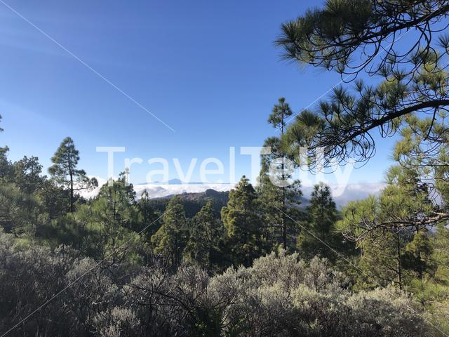 Seeing Mount Teide from around Pico las nieves on Gran Canaria