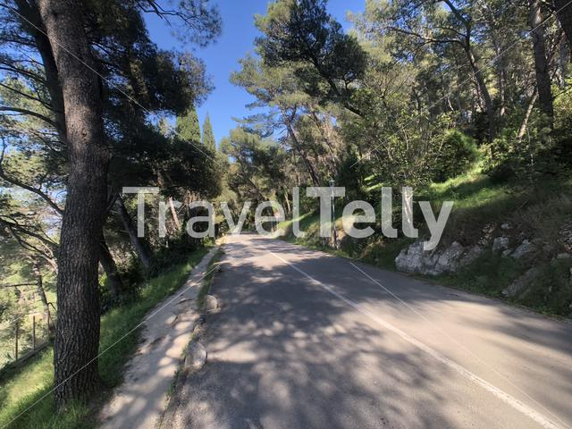 Road through Marjan Forest Park in Split Croatia