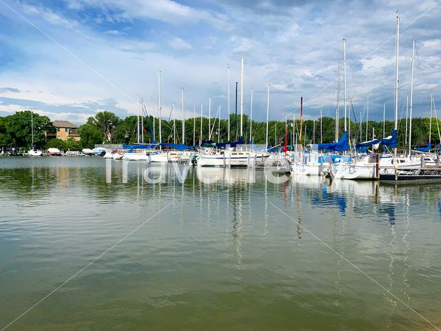 Sailboats in the marina