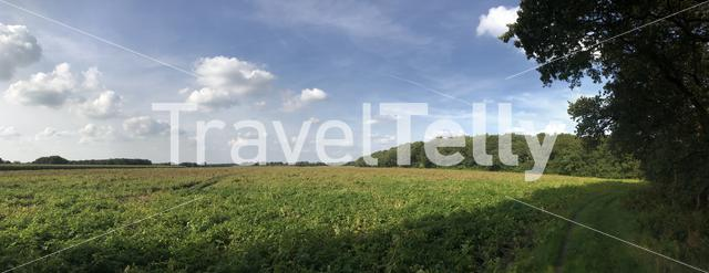 Panorama from farmland in Drenthe The Netherlands