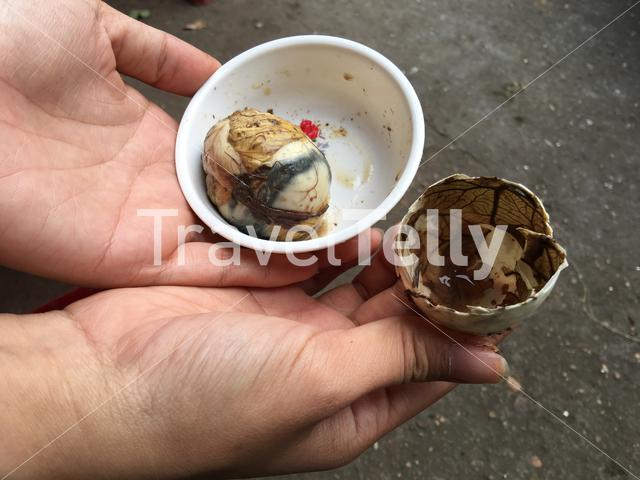 Balut (fertilized duck egg) in Hoi An Vietnam