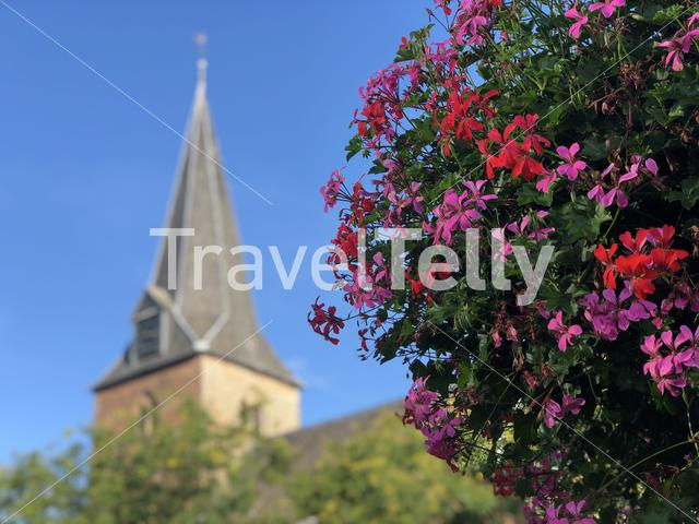 Flowers with the church tower of Ruurlo in Gelderland, The Netherlands