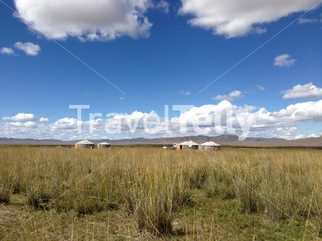 Yurts at the countryside in Mongolia