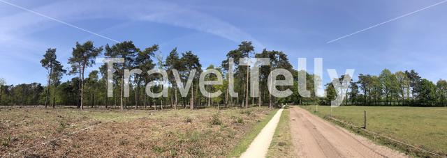 Panorama from a bicycle path through natural reserve Lankheet in Overijssel The Netherlands