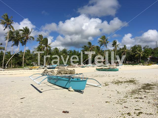 Catamaran Boats and palmtrees at the beach in Anda Bohol the Philippines