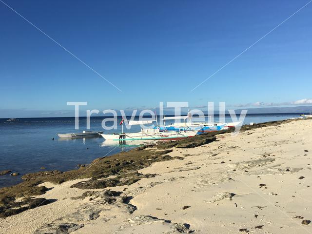 Catamaran Boats at the reef during low tide in the morning at Balicasag Island in Bohol the Philippines