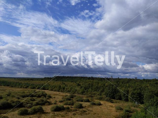 View from the observation tower in the forest around Elp in Drenthe, The Netherlands
