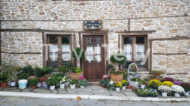 Flowers in front of a house in Arnaia in Chalkidiki, Greece