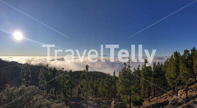 Panoramic view from Pico las nieves on Gran Canaria