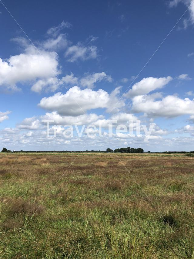 Scenic landscape at The Veenhoop in Friesland The Netherlands